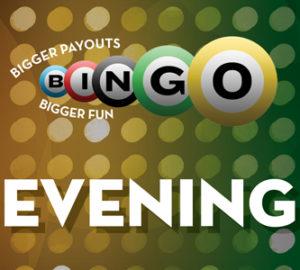 bingo brochure